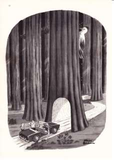 1967 Charles Addams Tree Woodpecker New Yorker cartoon