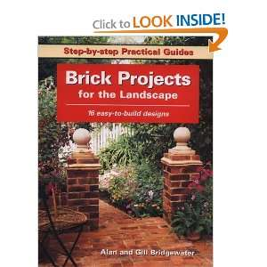 (Step by Step Practical Guides) [Paperback] Alan Bridgewater Books