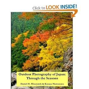(9781461105206) Mr. Daniel H. Wieczorek, Mr. Kazuya Numazawa Books