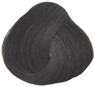Goldwell Topchic Professional Hair Color (2.1 oz. tube)  3N