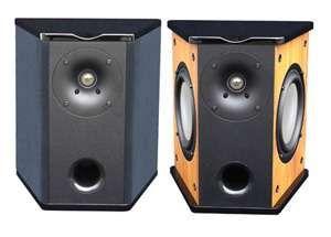 Premier Acoustic PA 6S Surround Speakers Pair Black