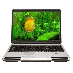 Toshiba Satellite P105 S6167 17 Widescreen Laptop (Intel