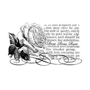 Penny Black Rubber Stamp 3X4.75 by Penny Black: Arts, Crafts & Sewing