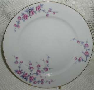 Rosenthal Rosenthale Germany Dinner Plate Pink Flowers