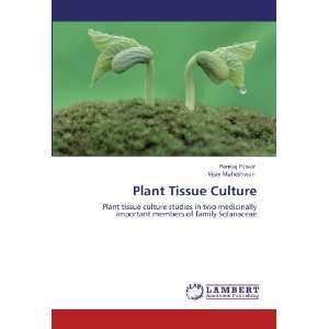 Solanaceae (9783845403946): Pankaj Pawar, Vijay Maheshwari: Books