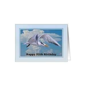 Happy Birthday, 95th, Royal Tern Bird Card Toys & Games