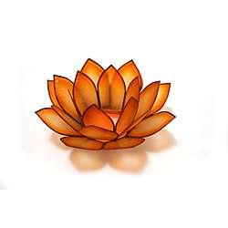 Capiz Shell Paradise Mango Lotus Tea Light (Philippines)