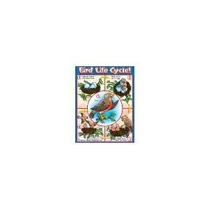 BIRD LIFE CYCLE FRIENDLY CHART Toys & Games