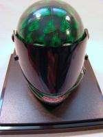 Winners Circle DALE EARNHARDT JR 13 Mini Helmet Green w/Case
