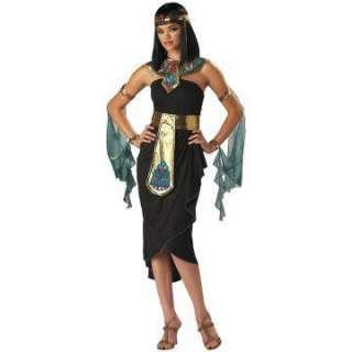 Cleopatra Adult Costume   Includes Dress, Wrist/Armbands, Headband
