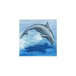 Jumping Dolphin Ceramic Wall Art Decorative Tile 8x8 Home & Kitchen