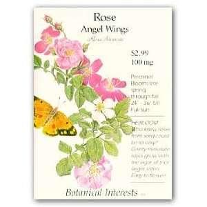 Rose Angel Wings Seed Patio, Lawn & Garden